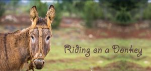 Ridiing on a Donkey
