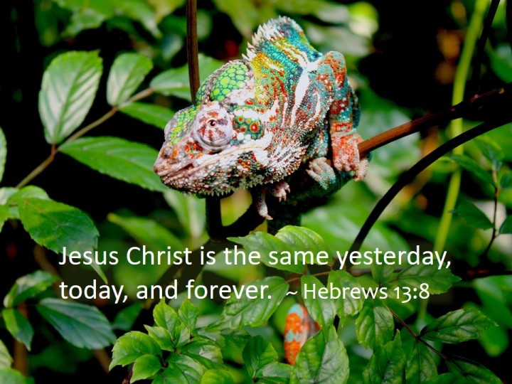 colorful chameleon to contrast with the text that Jesus Christ is the same yesterday, today, and forever. From Hebrews 13:8
