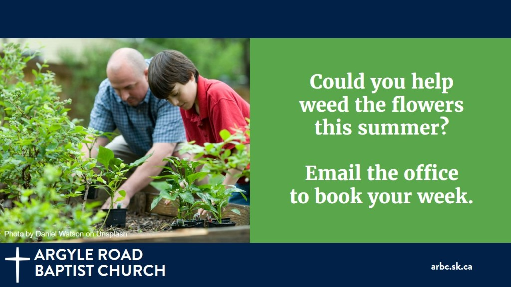 We also need help this summer keeping the flower beds looking fresh and weed free. If you can take a week or more, email the office. Thank you!