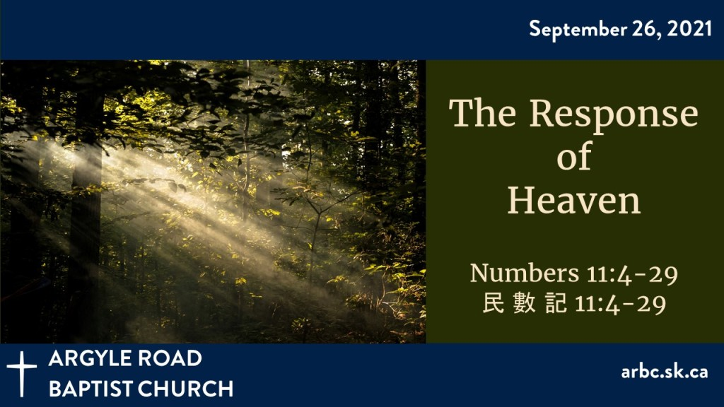 """Crepuscular rays coming through the trees to illustrate the sermon titled """"The Response of Heaven"""""""